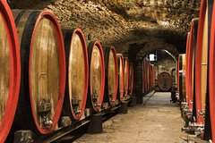 Tour of 900year old secret cellars + tasting of 3 wines and bread with EVO