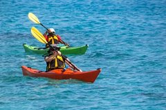 Small-Group Kayaking Experience in Sydney