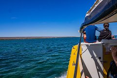 Ningaloo Immersion Private Charter
