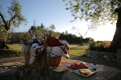 Picnic on the Chianti Hills with Wine Tasting