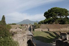 Private tour Pompeii Vesuvius and Winery from Sorrento