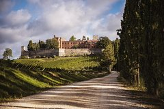 Wine and Cooking Under the Tuscany Sun