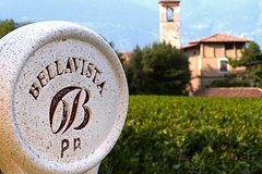 Wine Tour in Franciacorta from Milan