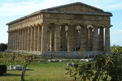 Pompeii and Paestum Fullday from Naples or Sorrento or Positano or Amalfi
