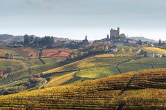 Piedmont and Barolo Wine Tour from Milan