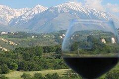 Wild Abruzzo TruffleHunting WineTasting CookingClass Experience from Rome