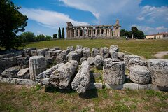 Paestum, visit of the Archaeological Park and tasting at a well-known dairy