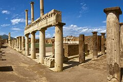 Pompeii And Wine Private Tour from Naples
