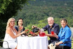 Boutique Atherton Tablelands Small-Group Food and Wine Tasting Tour from Cairns