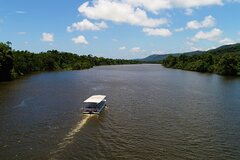 Ultimate Daintree Rainforest Wildlife Experience Cruise