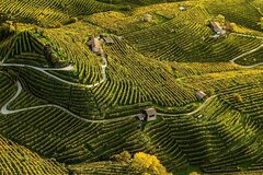 Prosecco Private Luxury Wine Tour from Venice with Lunch