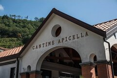Wine tasting at the Apicella winery