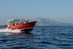 Full-Day Small-Group Capri and Blue Grotto Tour by Boat