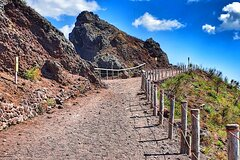 Guided Vesuvius Tour with Lunch and Skip the Line ticket included