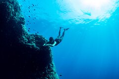 Snorkeling with Marine Biologist Expert from Sorrento