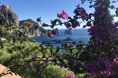 Day tour of the amazing island of Capri and Anacapri with Tour by boat incl