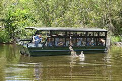 Hartley's Crocodile Adventure Day Trip from Cairns