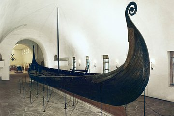 The Viking Ship Museum and Historical Museum Ticket