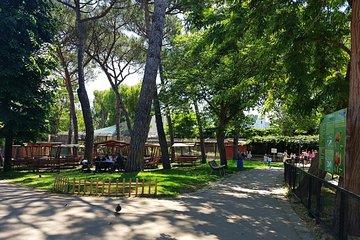 Naples Zoo Ticket