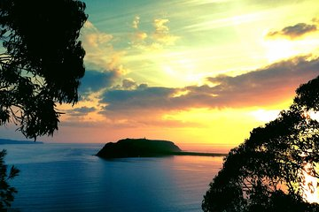 Palm Beach and Pittwater Kayak Tours