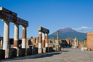 Pompeii and Herculaneum Skip-The-Line with Lunch&WineTasting Fullday from Rome