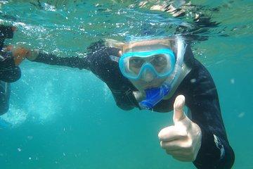 Private Snorkeling Excursion