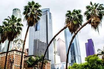 The 10 Best Hollywood Tours, Tickets + Activities to