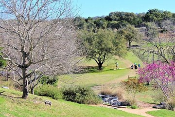 Dine and Disc Golf Package in Marble Falls