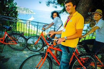 Nice Essentials Guided Bike Tour