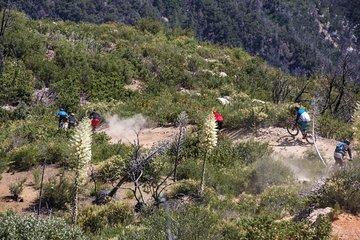 Mt Wilson Mountain Bike Enduro Day