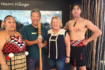 Rotorua and Geothermal Living Maori Village Tour