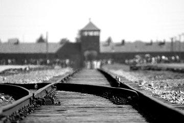 Combo Tour to Auschwitz-Birkenau and Wieliczka Salt Mine in One Day
