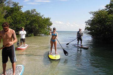 THE TOP 10 Key West Water Sports (w/Prices)