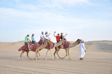 Dubai Desert Adventure Half-Day Tour