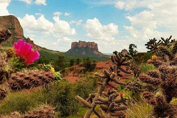 Sedona Day Trip from Phoenix