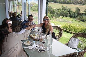 Premium Half-Day Constantia Wine Tour from Cape Town