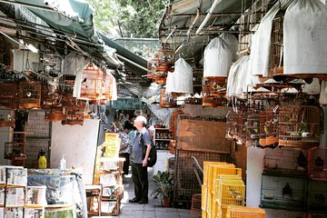 Small-Group Tour: Local Markets Hopping Tour in Hong Kong Tickets