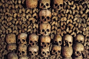 Group or Private Paris Catacombs Special Access Tour
