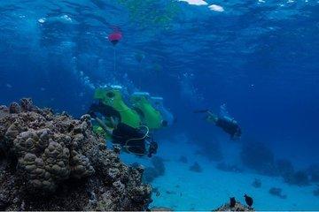 Aquabike Adventure (Bora Bora) - 2019 Book in Destination - All You