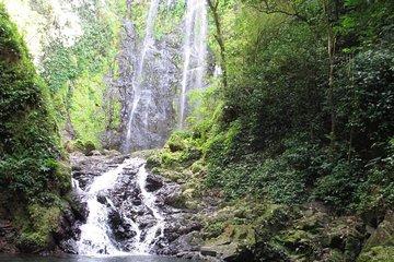 Hiking to a Hidden Waterfall Adventure