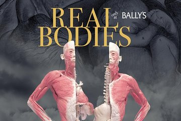 Real Bodies at Bally's Hotel and Casino