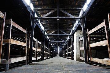 Auschwitz-Birkenau and Wieliczka Salt Mine Day Tour from Krakow
