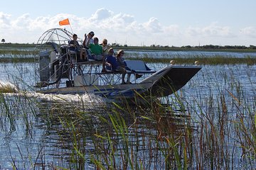 Private Tour: Florida Everglades Airboat Ride and Wildlife Adventure