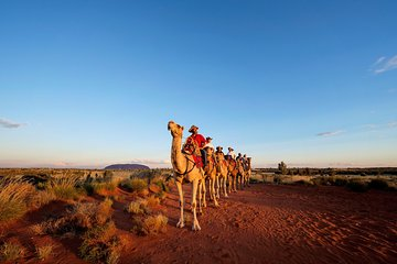 Uluru Small-Group Tour by Camel at Sunrise or Sunset