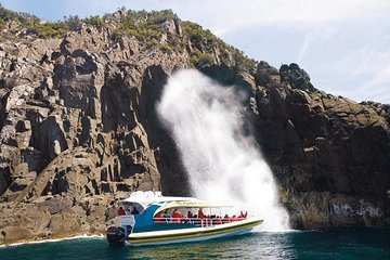 Full-Day Bruny Island Cruises Day Tour from Hobart
