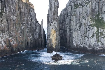Tasman Island Cruises and Port Arthur Historic Site Day Tour from Hobart