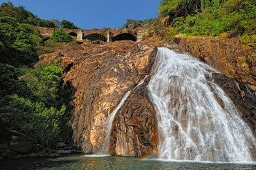Day Trip to Mollem National Park Including Dudhsagar Falls and Jeep Safari from Goa