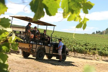 Full-Day Stellenbosch 4x4 Wine Safari and Wine Tasting Voyage Private Tour