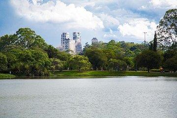 São Paulo Private City Tour from Santos Cruise Terminal
