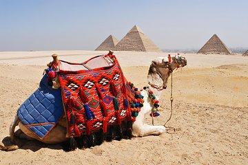 Save 10.00%! Giza Pyramids, Alabaster Mosque, Hanging Church Private Tour